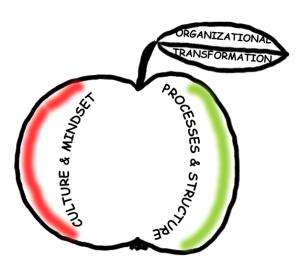 org_transform